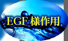 EGF様作用