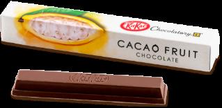 キットカット ショコラトリー カカオフルーツチョコレート