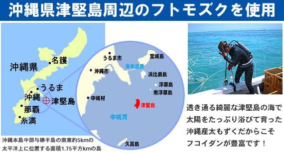沖縄県津堅島周辺の太もずくを使用