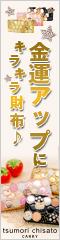 金運アップにキラキラ財布♪tsumorichisato