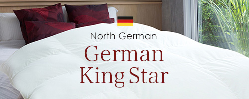 ドイツ産 ダウン95% 2層立体キルト羽毛布団