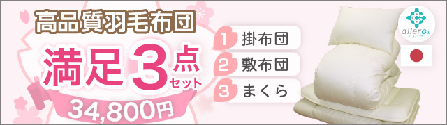 新生活応援!! 羽毛布団6点セット