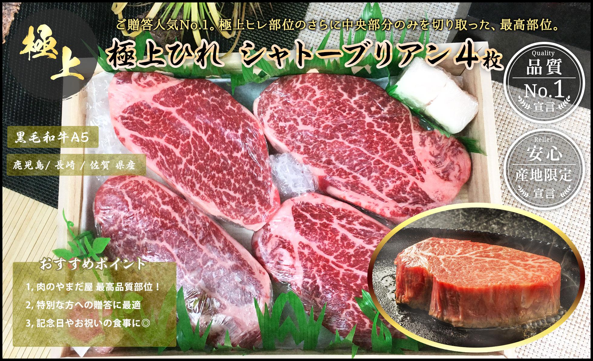 九州産黒毛和牛A5ランク シャトーブリアン 贈答 ギフト お取り寄せグルメ 人気 ひれステーキ