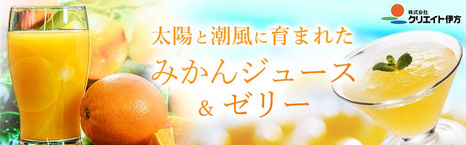 【愛媛県】産地直送 伊方みかんジュースやゼリー クリエイト伊方