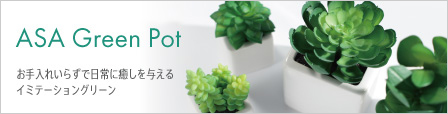 ASA Green Pot ���ߥơ�������
