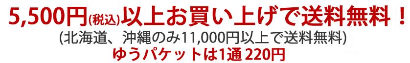 5,400円(税込)以上お買い上げで送料無料!