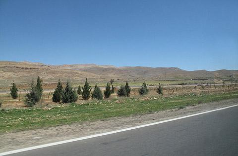 山並みと生命の木、ギャッベ(ギャベ)のデザインのような広大なシラーズの景色