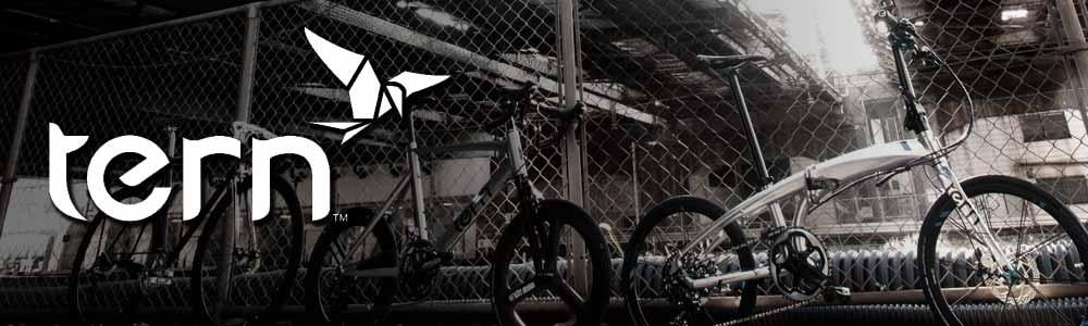 Tern 2021