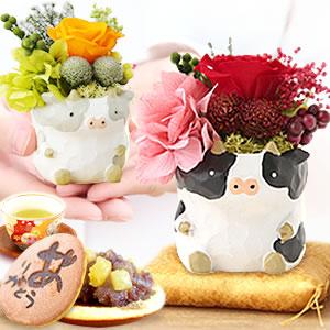 敬老の日 プレゼント 牛のプリザ―ブドフラワー どら焼き まとめ