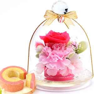 敬老の日  ガラスドームプリザM【ピンク】+プリン
