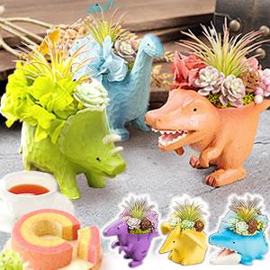 敬老の日 選べる6種!可愛い恐竜のミニポットプリザ