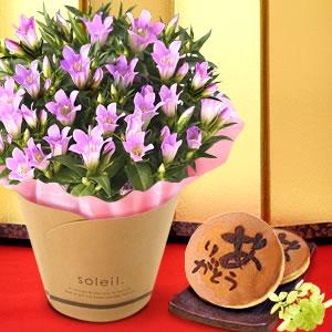 敬老の日  りんどう もも 和菓子
