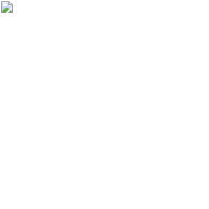 母の日 プレゼント カーネーション 鉢植え 5号 苺ホイップ