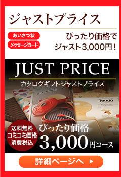ジャストプライス コミコミ価格で ジャスト3,000円!