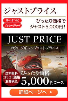 ジャストプライス コミコミ価格で ジャスト5,000円!
