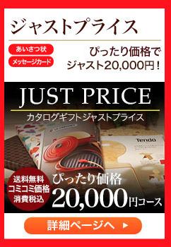 ジャストプライス コミコミ価格で ジャスト20,000円!