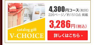 Vチョイス4300円コース