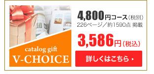 Vチョイス4800円コース