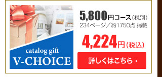 Vチョイス5800円コース