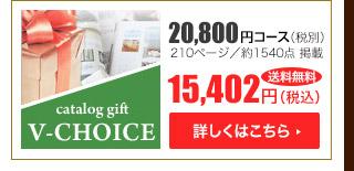 Vチョイス20800円コース