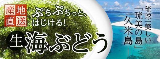 沖縄県久米島産海ぶどう