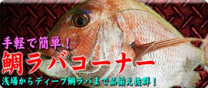 鯛ラバ特集