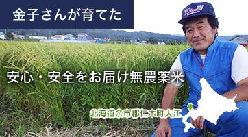 金子さんが育てた 安心・安全をお届け無農薬米