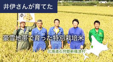 井伊さんが育てた 豪雪地帯で育った特別栽培米