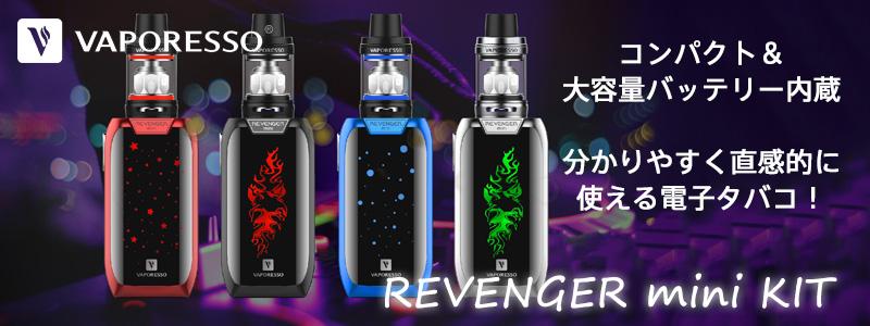 Revenger mini Kit