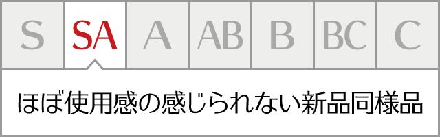 コンディションランク【sa】