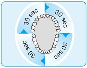 「ブラウン オーラルB 電動歯ブラシ 4分割」の画像検索結果