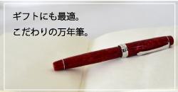 文具屋の筆記用具 筆記具 パイロット 万年筆 エラボ