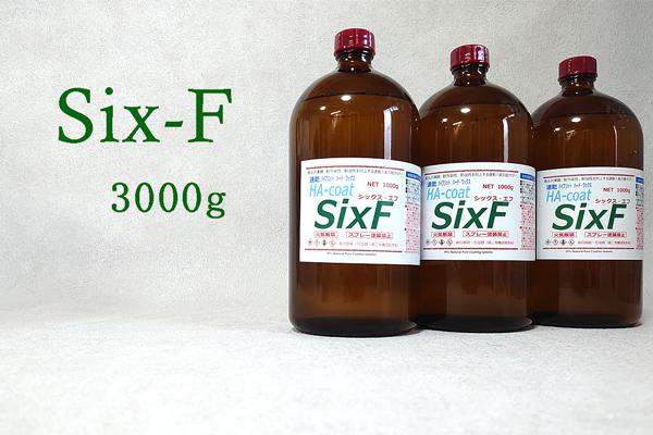 six-F3000g