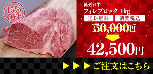 純近江牛 厳選フィレ肉ブロック