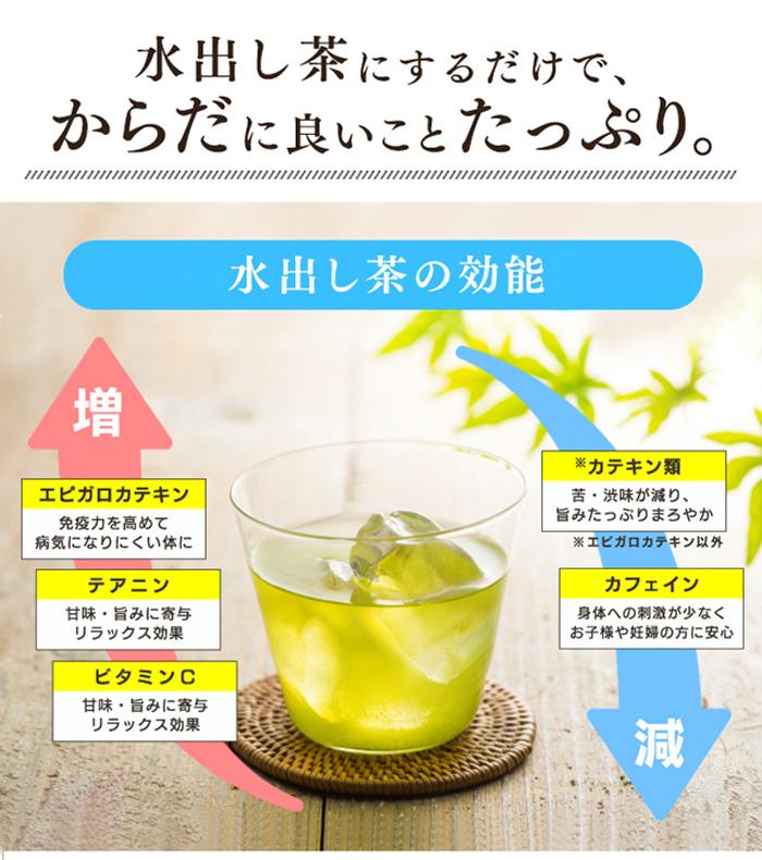 おいしい水出し煎茶ティーバッグ 大容量 TB 水出し 氷水 お得