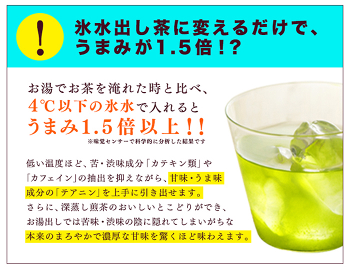 お徳用 静岡くき茶ティーバッグ 大容量 TB 水出し 氷水 お得