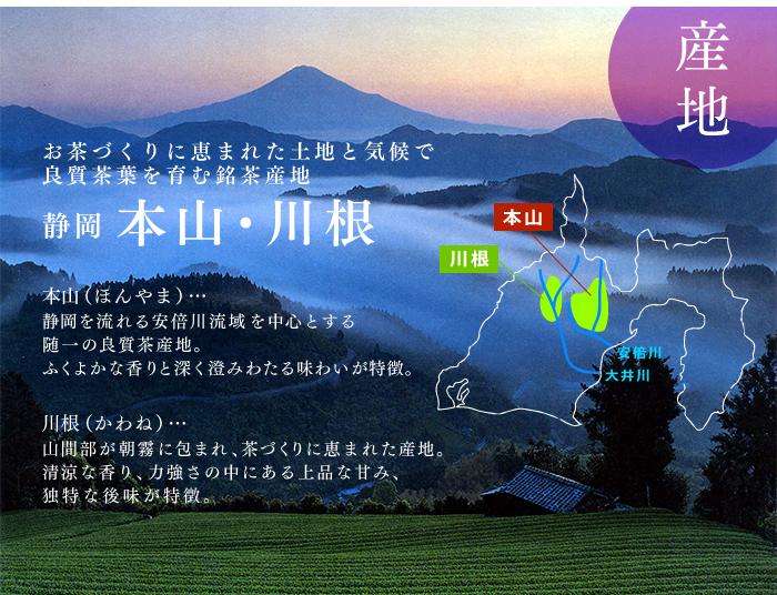 敬老の日ギフト 静岡抹茶まんじゅうと秋の限定深蒸し煎茶「名月」セット
