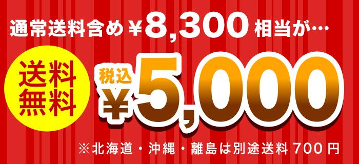 雅正庵の福袋 2020 数量限定 福箱 送料無料