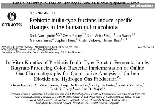 フラクトオリゴ糖は大腸の酪酸菌を増加させる作用