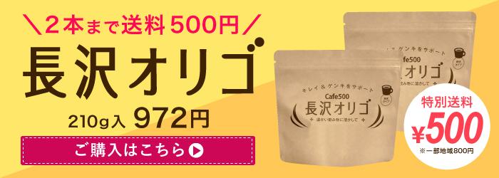 雅正庵の敬老の日ギフト 特別送料500円 長沢オリゴ