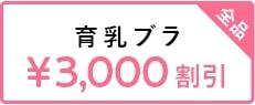 3000育乳ブラクーポン