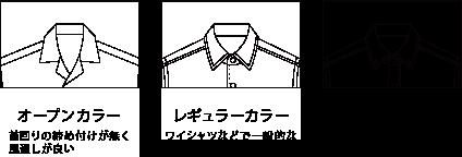衿サンプル