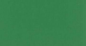 21フレッシュグリーン