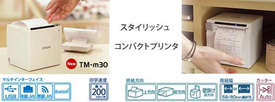 TM-m30シリーズイメージ