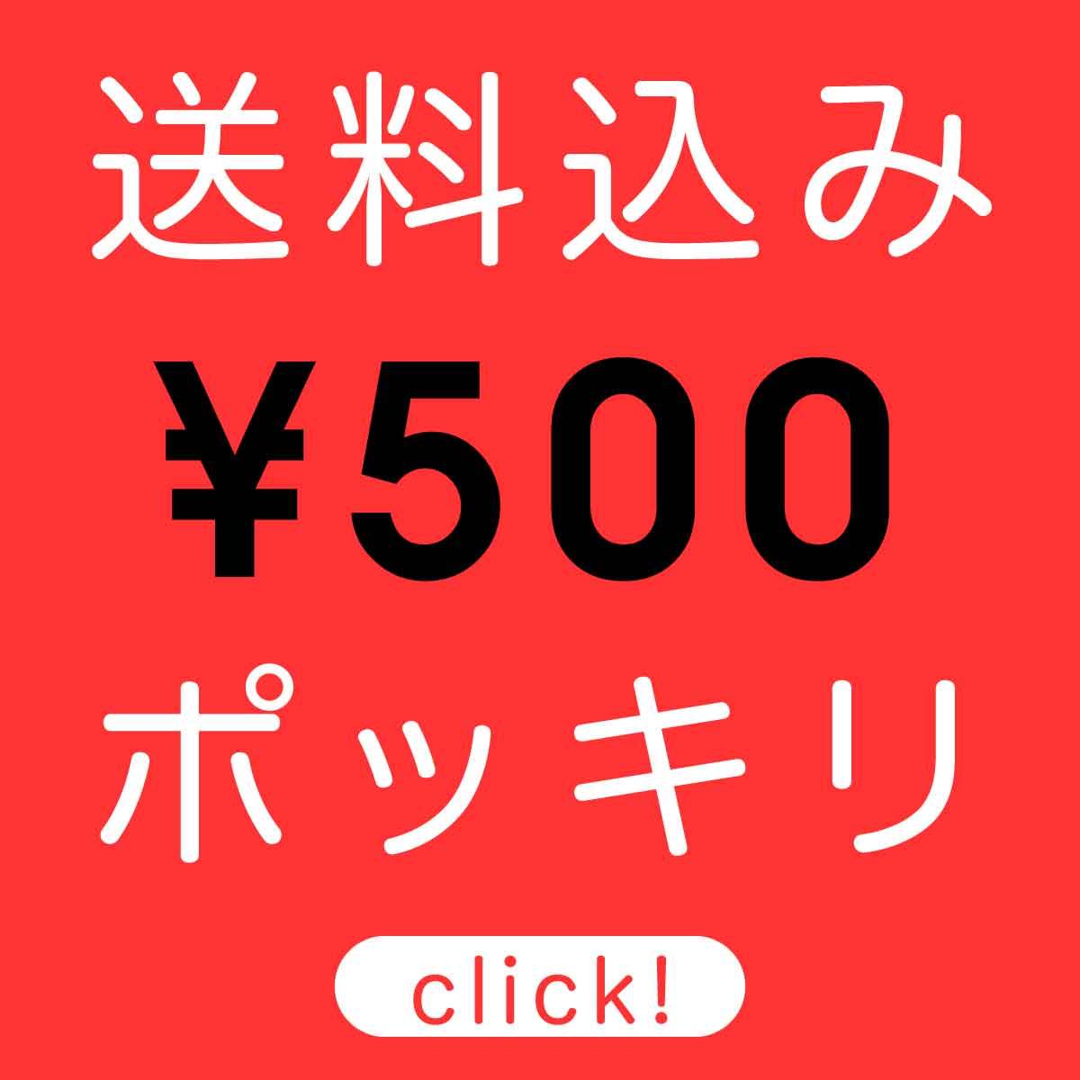 500円 ポッキリ