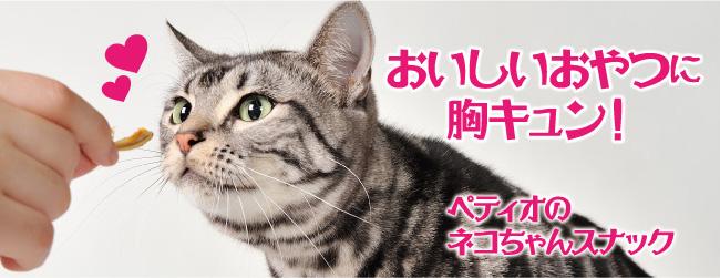 ネコちゃんのおやつ