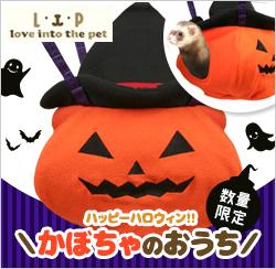 かぼちゃのおうち