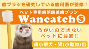 ワンキャッチ(Wancatch)歯ブラシ Sサイズ