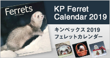 KP(キンペックス) 2019 フェレットカレンダー