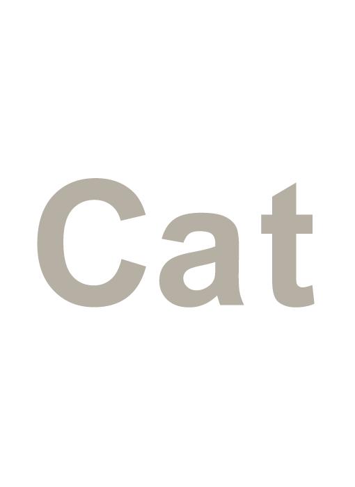 猫カテゴリ